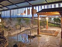 【長野県】≪白樺湖池の平温泉≫ 白樺リゾート 池の平ホテル(新宿発着)